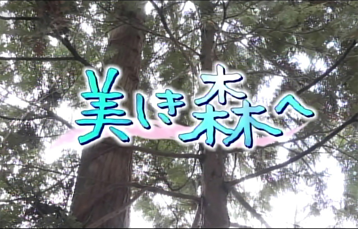 美しき森へ